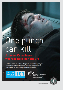 One Punch Can Kill Poster resized.png
